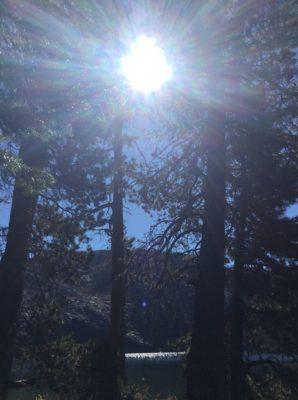 2020年 香音 新春コトハジマリの瞑想会 - シャスタの森
